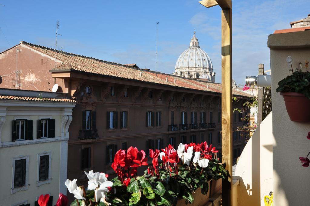 House Vatican View